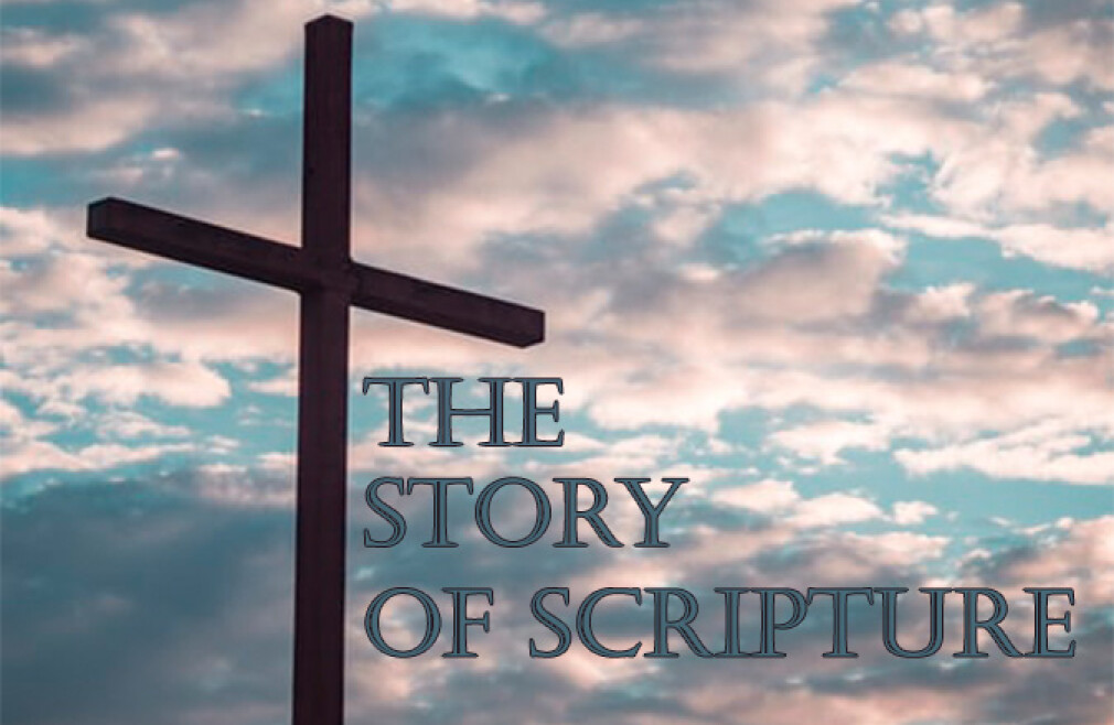 Maricopa Bible Study - The Story of Scripture