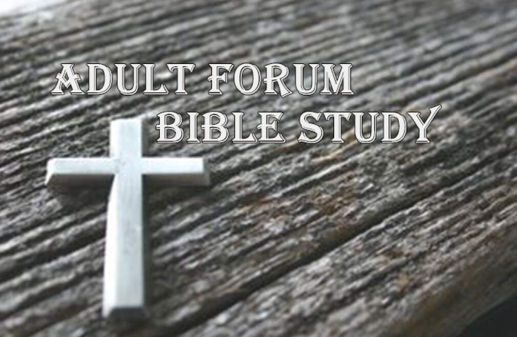 Adult Forum-Bible Study